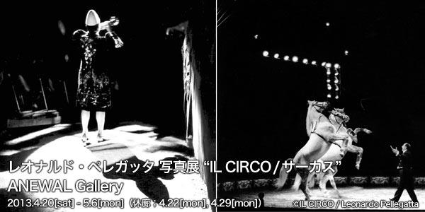 �쥪�ʥ�ɡ��ڥ쥬�å� �̿�Ÿ IL CIRCO ��������  ANEWAL Gallery ���˥奢�륮���